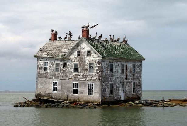 7. Isla Holandesa en la Bahía de Chesapeake